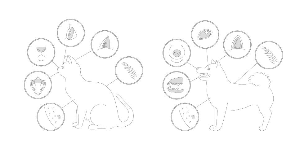 Unicharm Pet